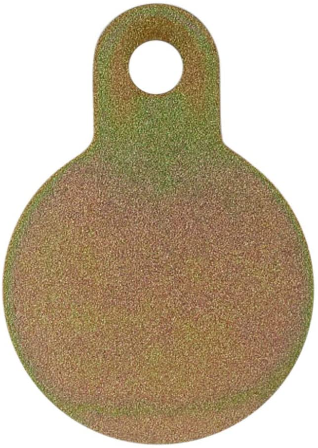 Picture of the front of the AR500 Steel Target in the shape of a gong.